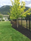 Picket Fencing by Good Neighbour Fence